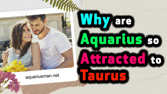 Why are Aquarius so Attracted to Taurus