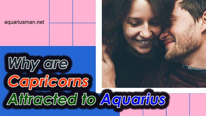 capricorns are attracted to aquarius